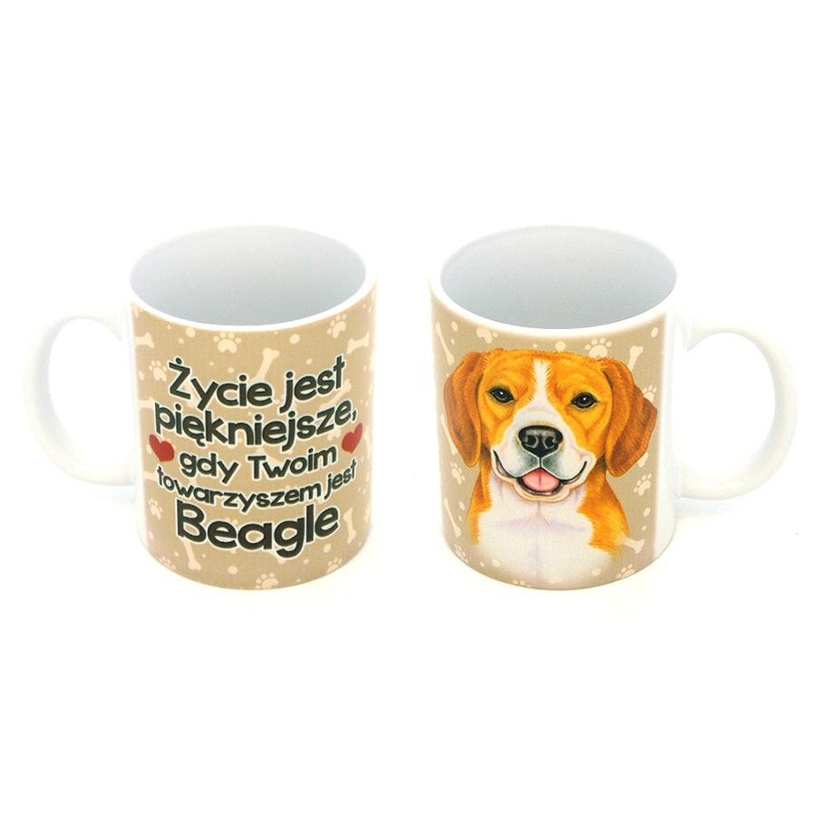 04 Beagle