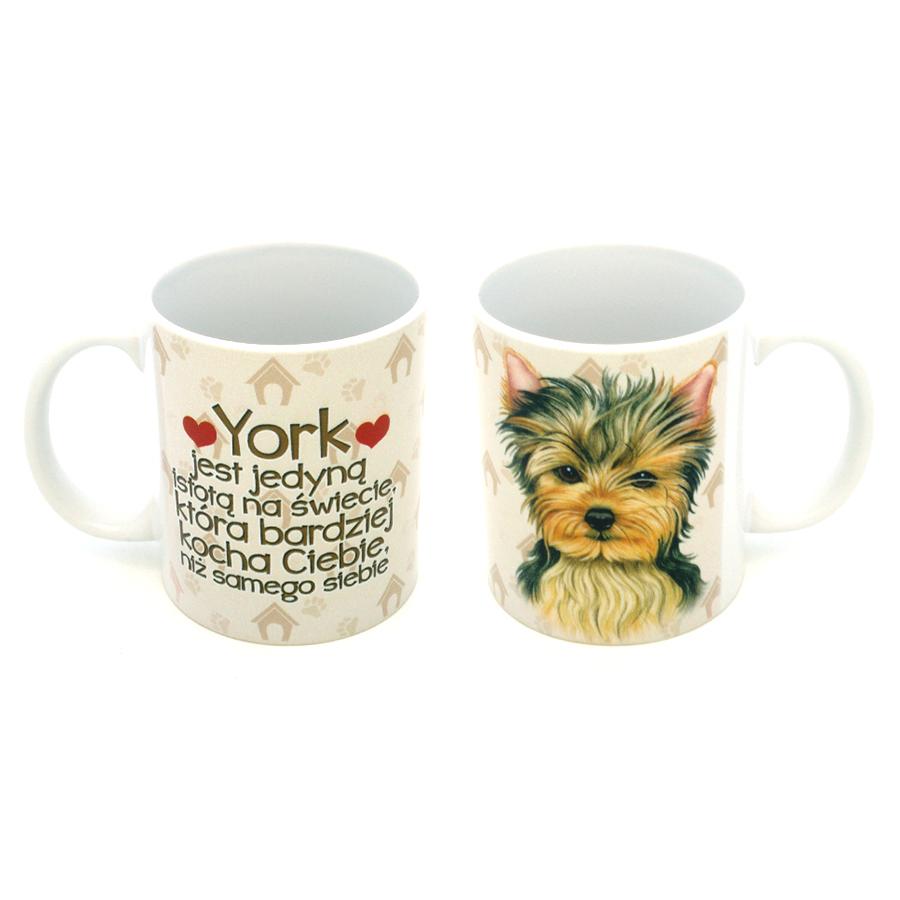 48 York (York Jest Jedyną...)