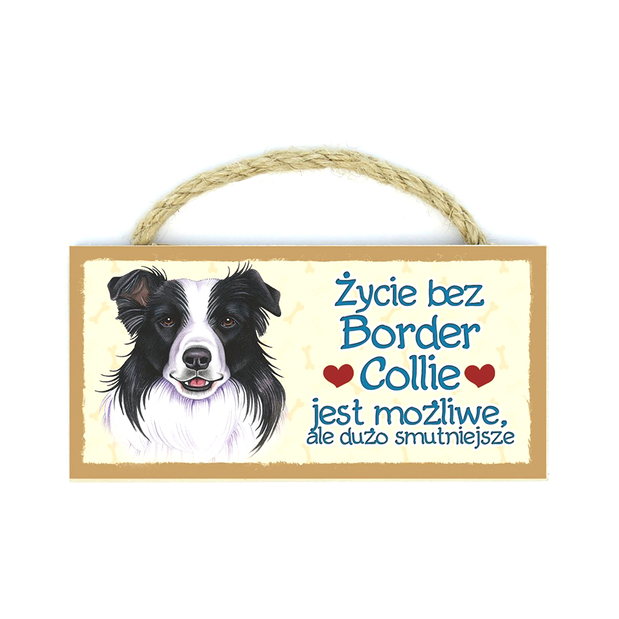 09 Border Collie