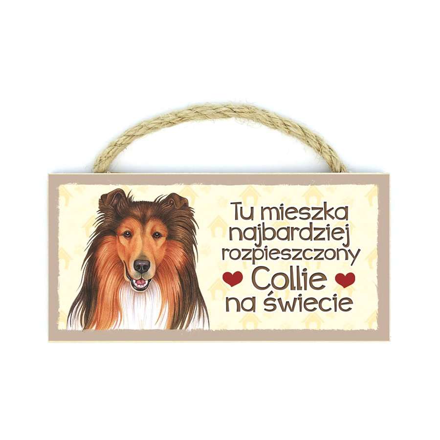 18 Collie