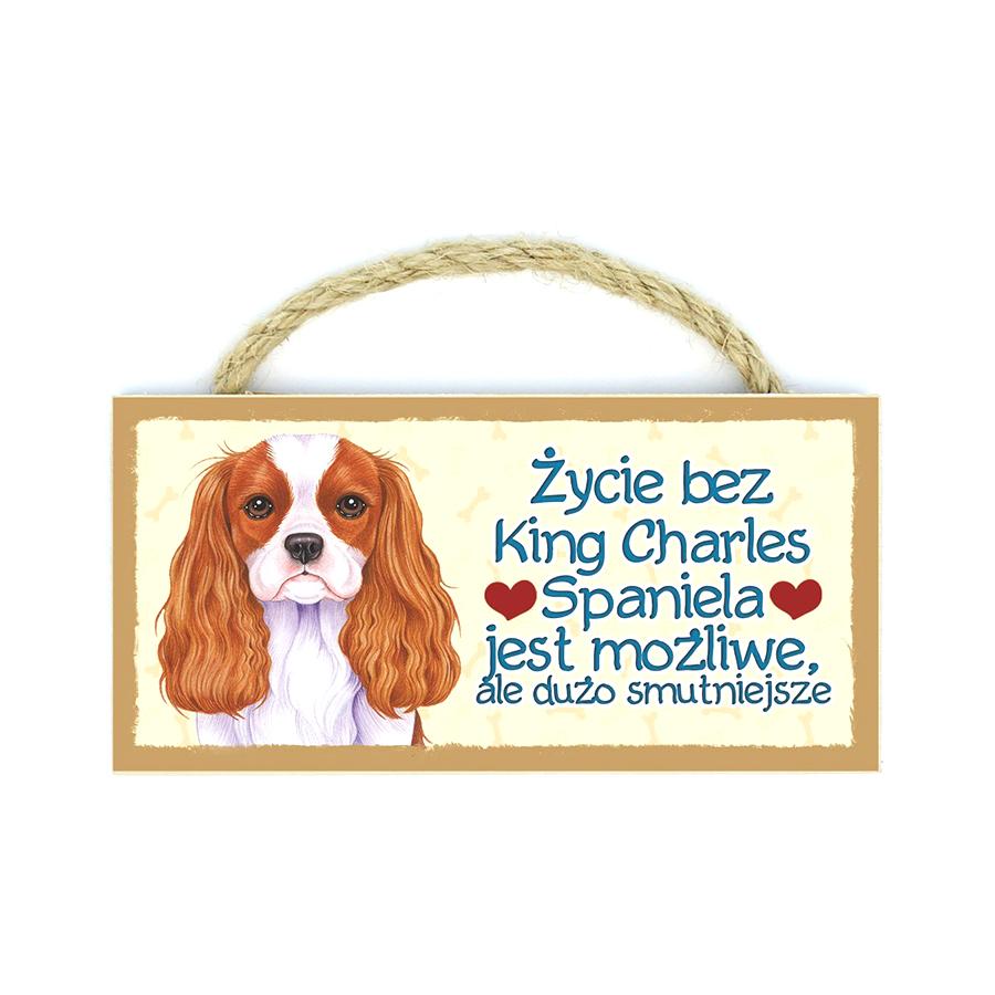 24 King Charles Spaniel