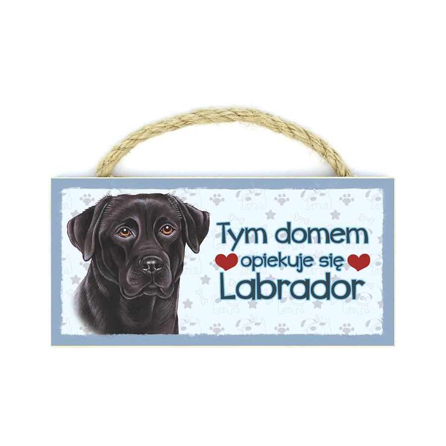 27 Labrador Czarny