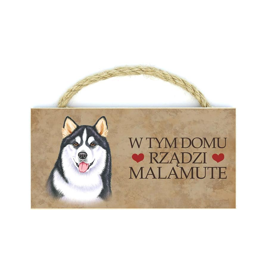 29 Malamute