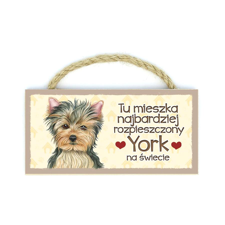 50 York (Tu Mieszka...)
