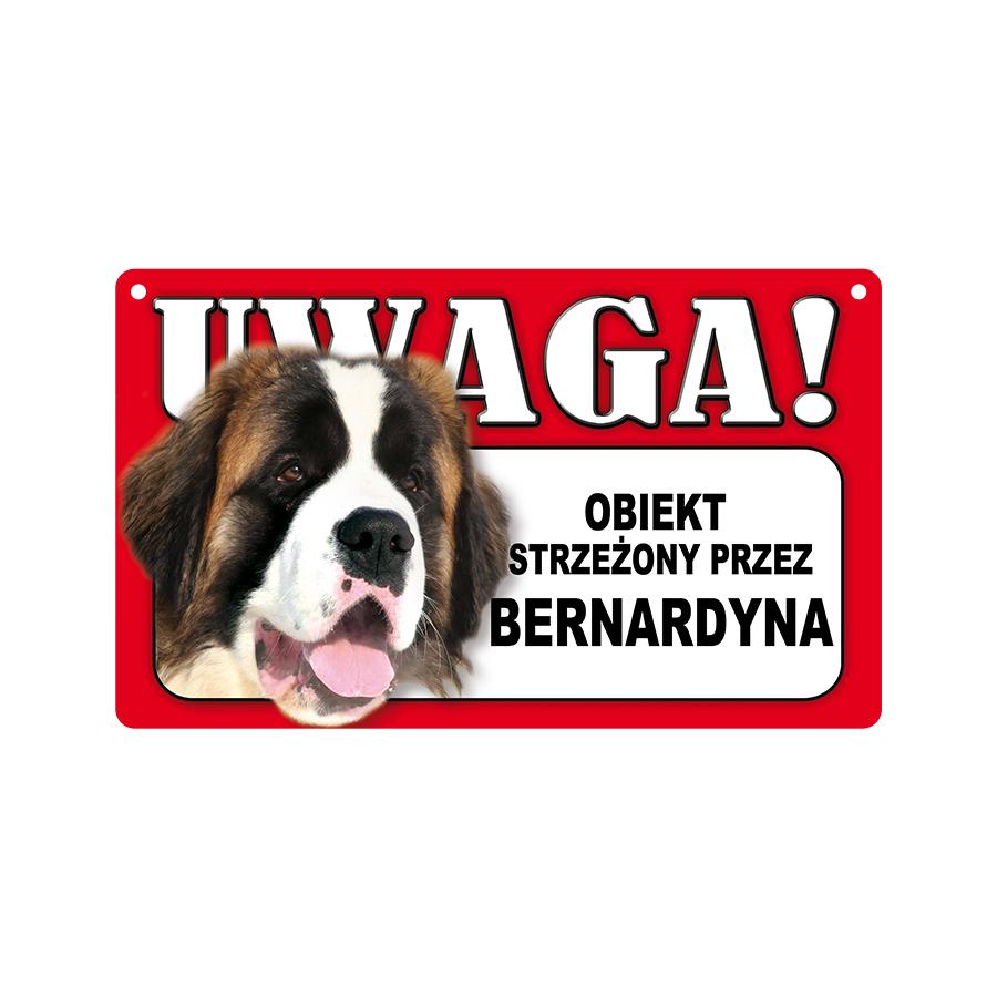 05 Bernardyn