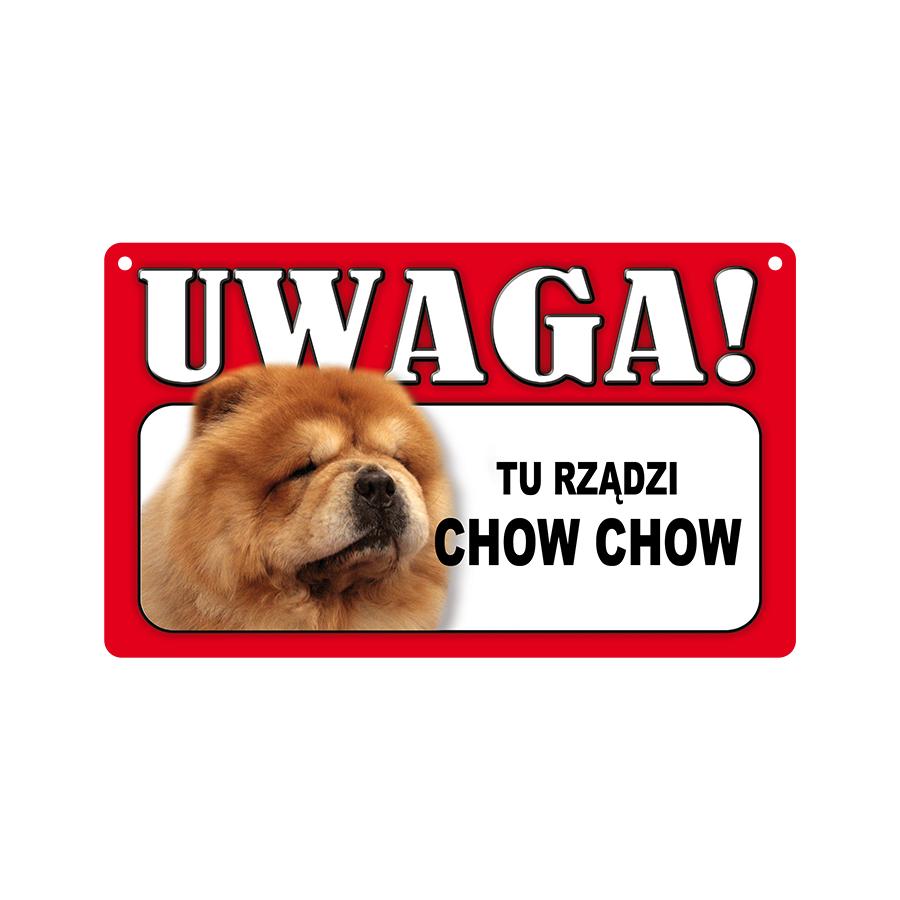 12 Chow Chow