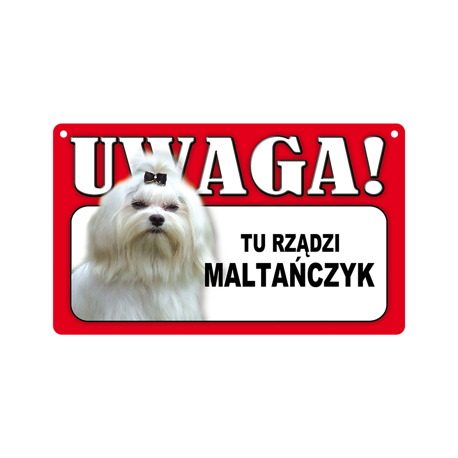 24 Maltańczyk