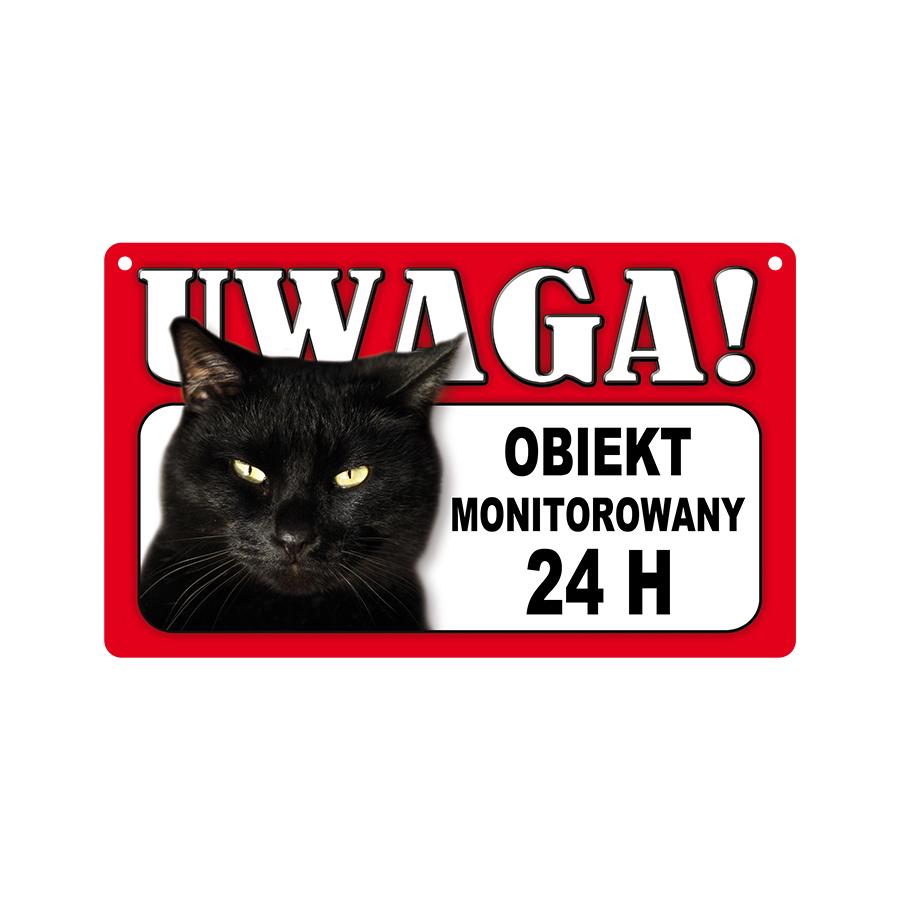 44 Kot Czarny