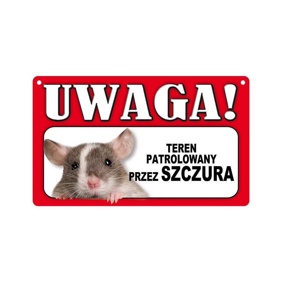 57 Szczur