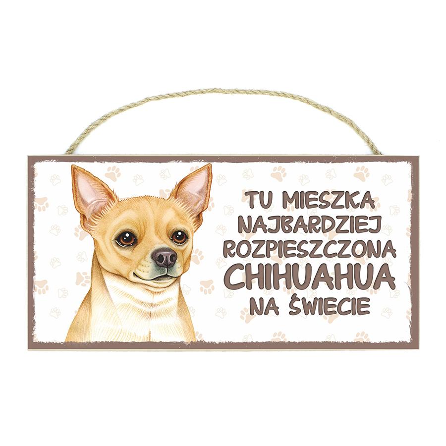 12 Chihuahua