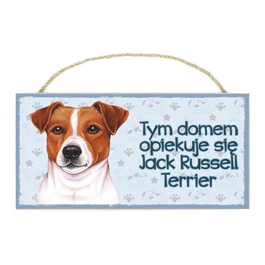 19 Jack Rusell Terrier