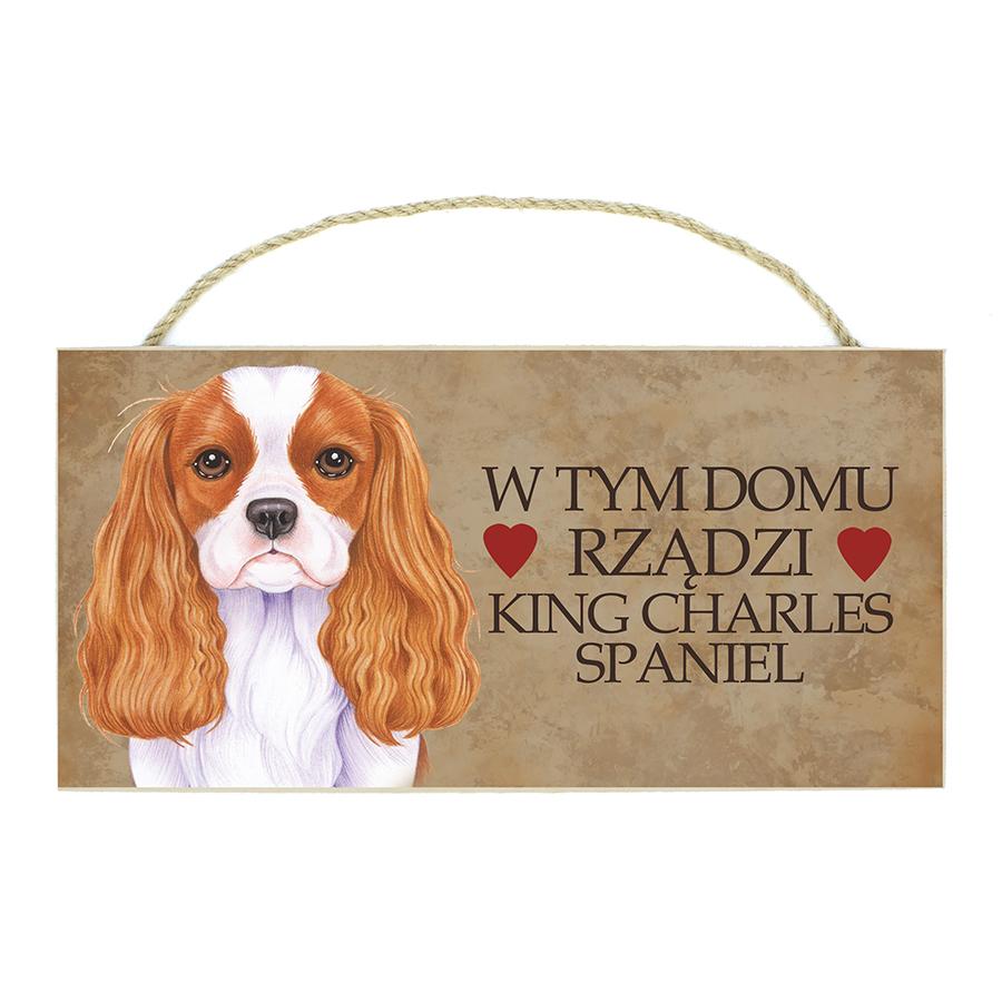 22 King Charles Spaniel