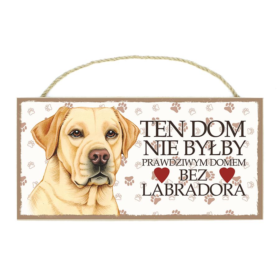23 Labrador Biszkopt (Ten Dom...)