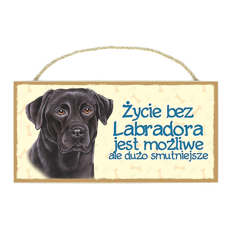 25 Labrador Czarny