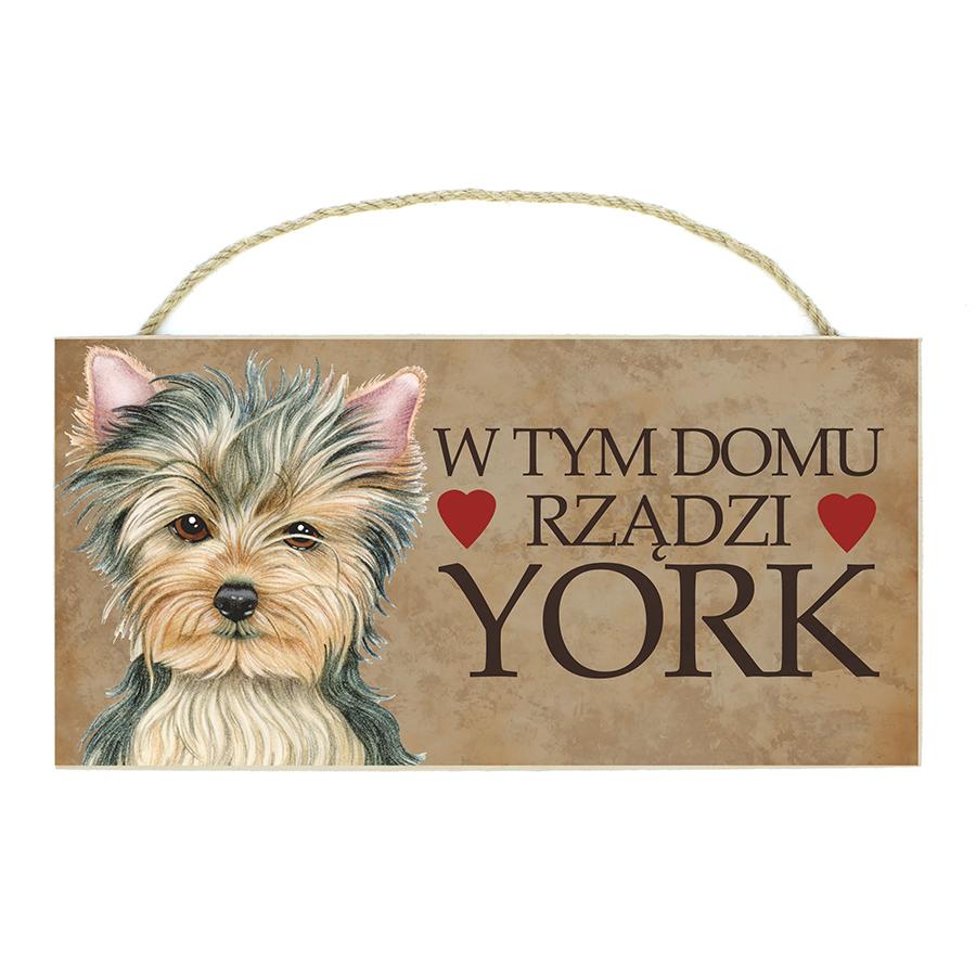 50 York (W Tym Domu...)
