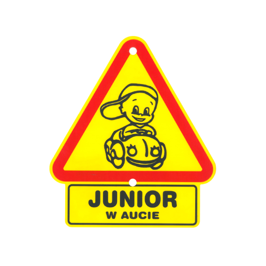 06 Junior w aucie