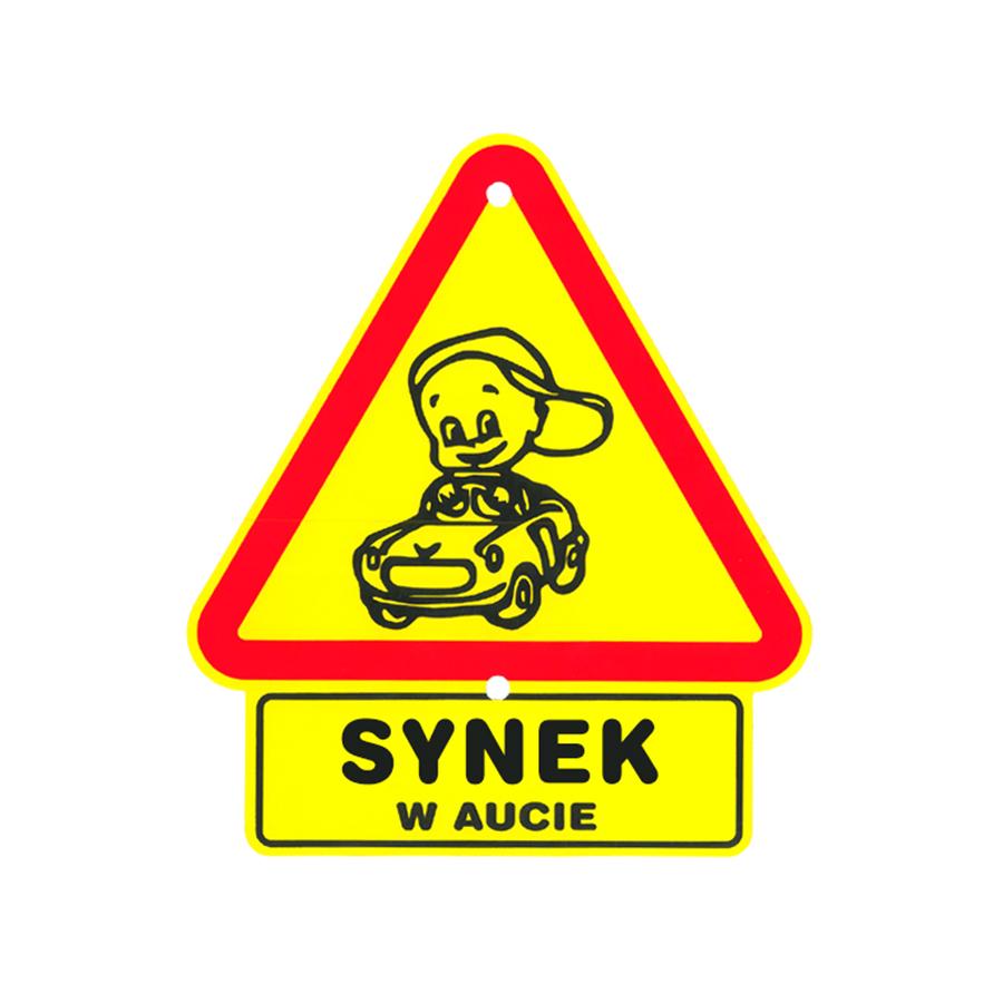 09 Synek w aucie
