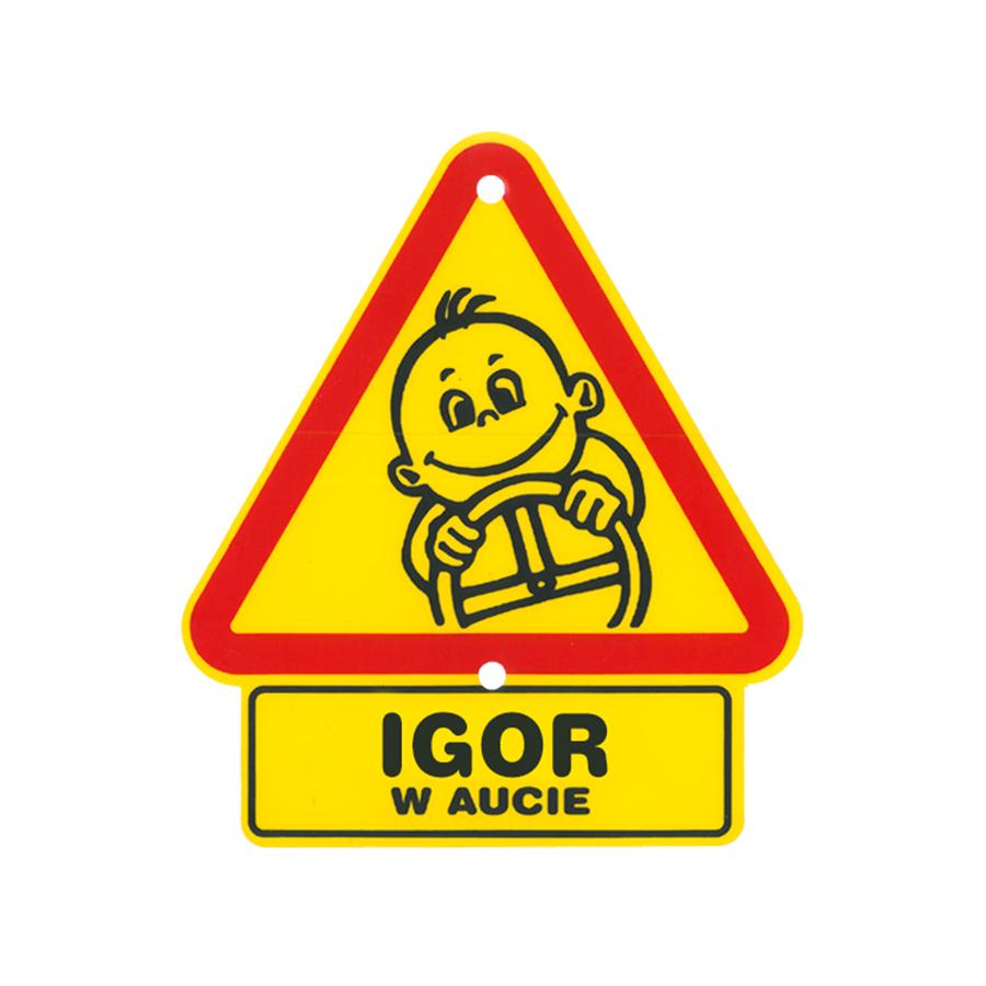 45 Igor